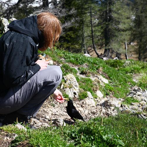 wandelen in Triglav Nationaal Park in Slovenië; foto bron Han Vroon