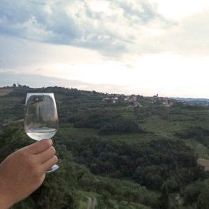 een glasje witte wijn met uitzicht over heuvels van Brda wijnregio in Slovenië; bron Mijn Slovenië