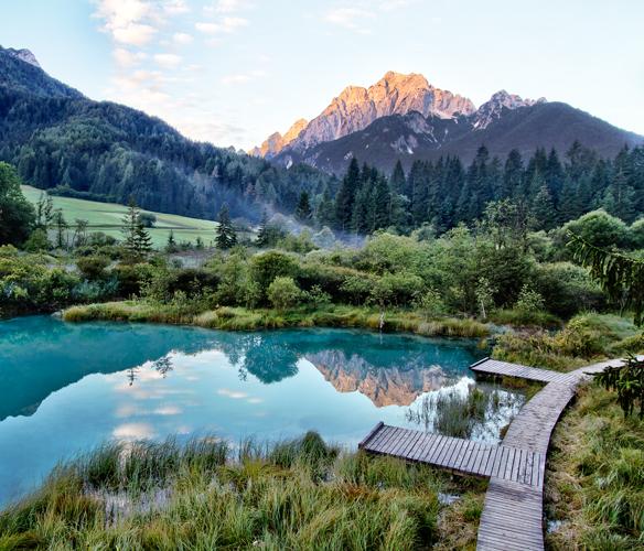 natuurreservaat Zelenci bij Kranjska Gora in de Alpen van Slovenië