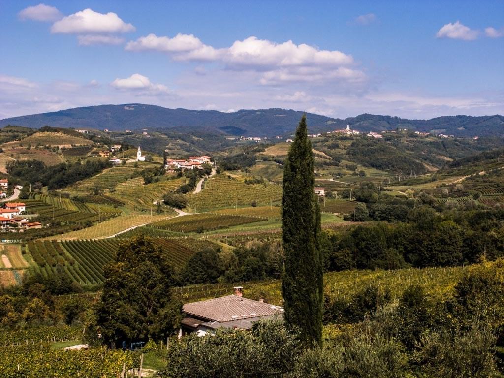 Brda; Sloveens Toscane