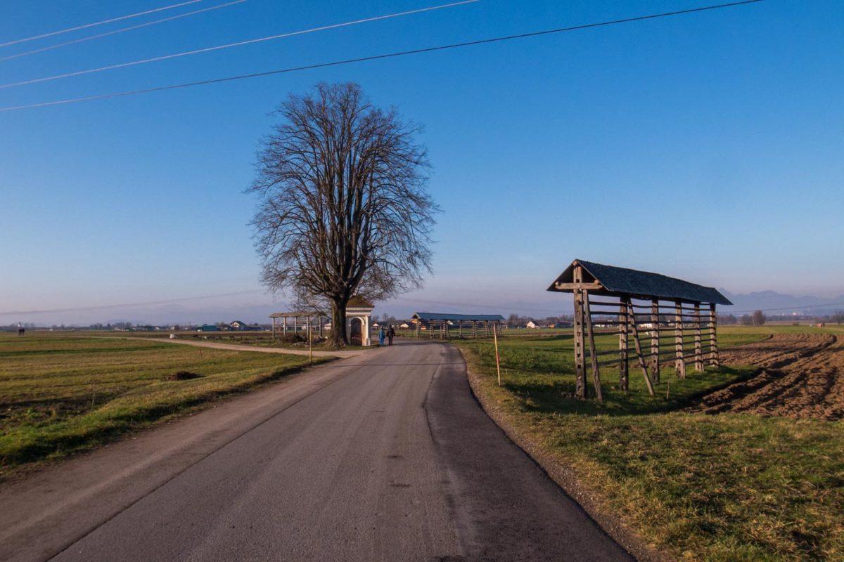 Fietsen in Barje, Slovenië