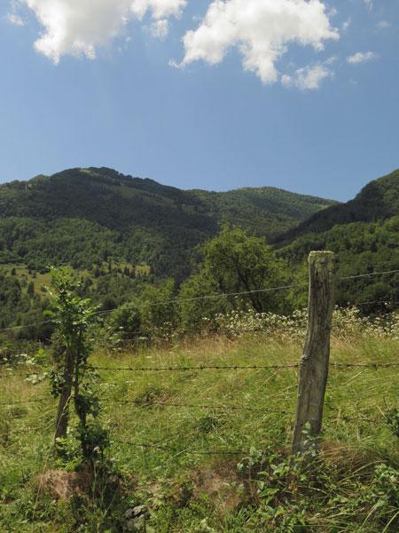 wandelen, javorca, groen, bron MijnSlovenie
