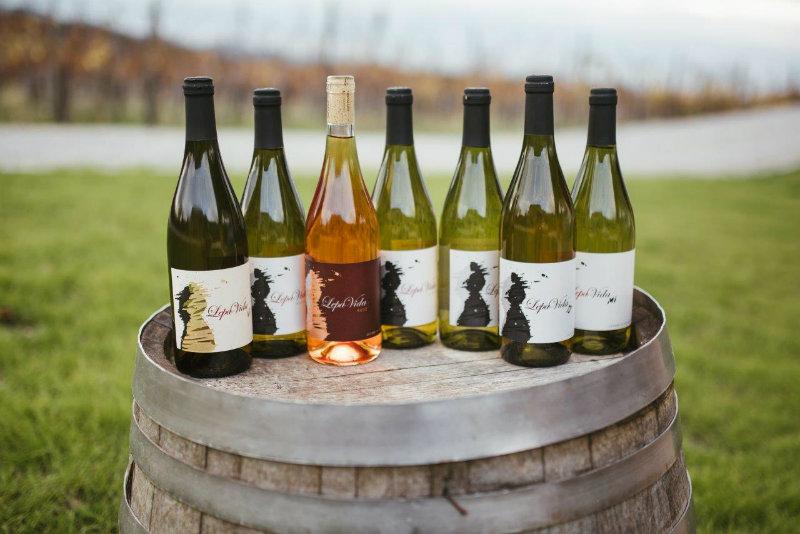 lepa vida, winery, wines, boek mijn slovenie
