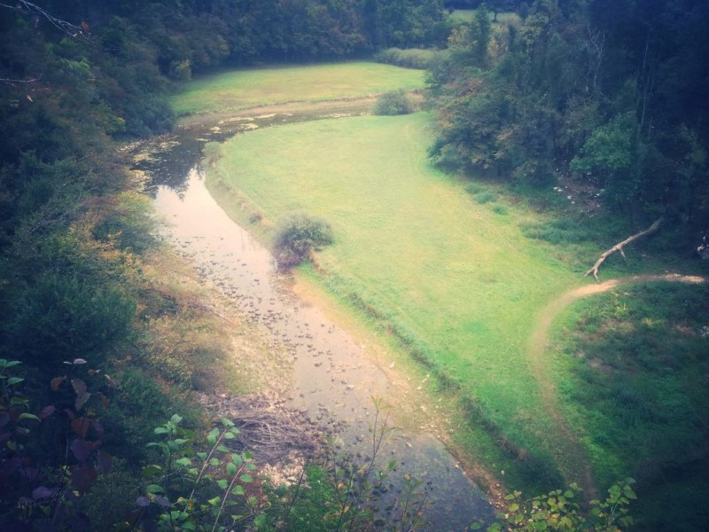 river, rak, evadinarica