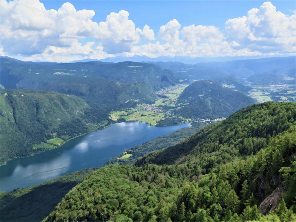 berg Vogel boven Bohinj meer in Slovenie