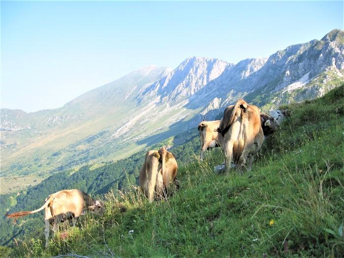 wandelreis Slovenie