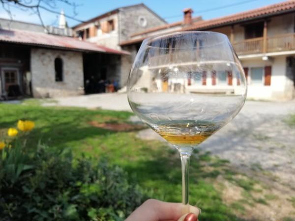 culinarreis_Slovenie_wijn