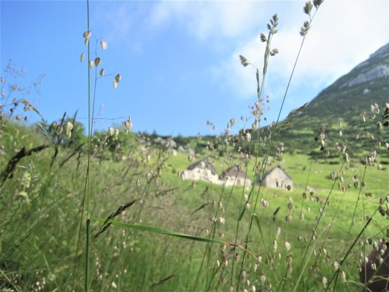 hike Soca vallei Triglav Slovenie
