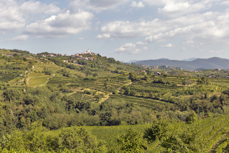 Smartno dorpje in Brda wijnregio najaar
