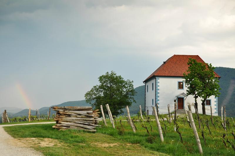 Skalce Slovenske Konjice wijngaarden