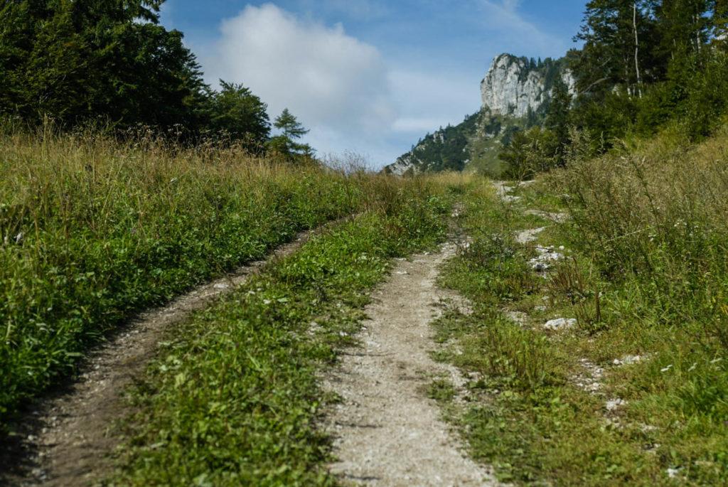 bosweg gravel mountainbiken fietsen wandelen Slovenië Karavanken
