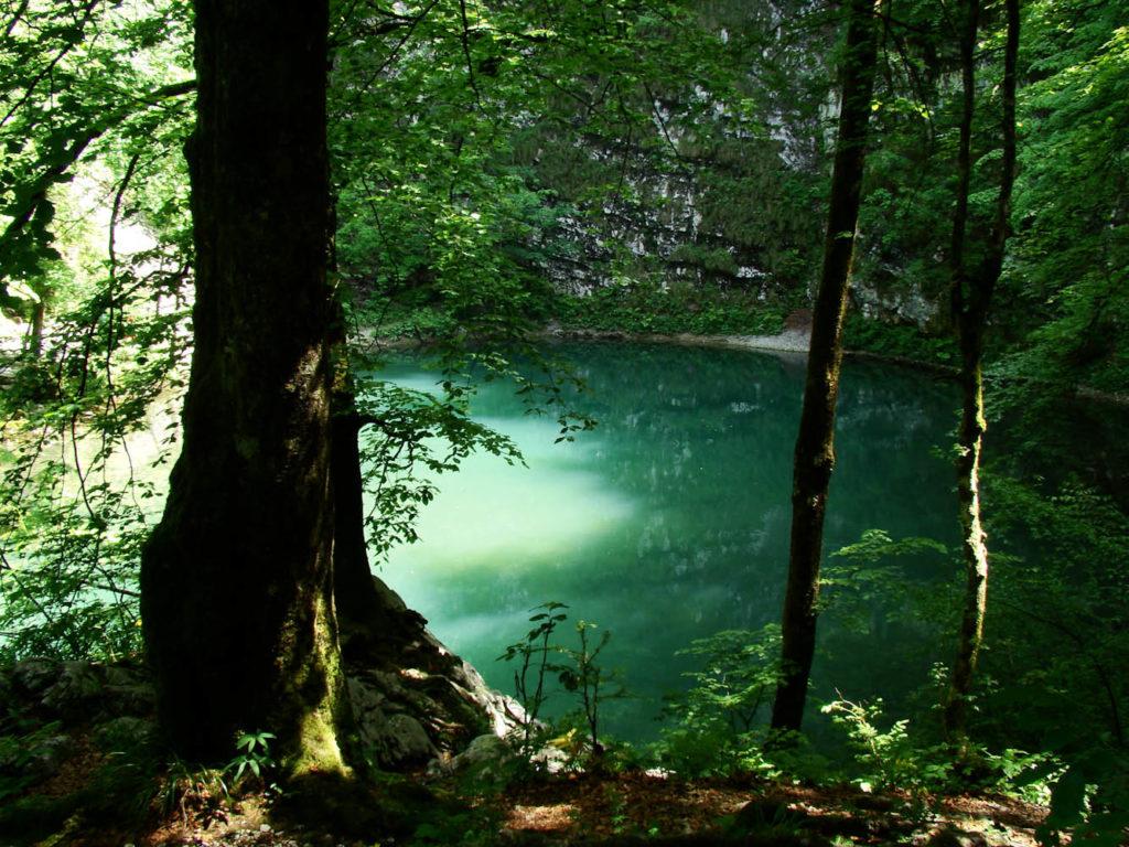 wandelen educatief wandelvakantie Slovenië