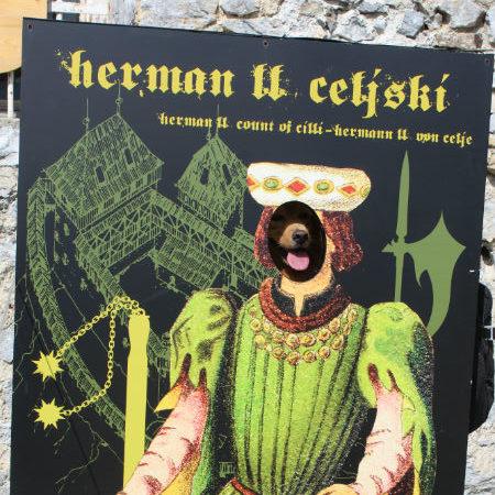 celje kasteel met hond