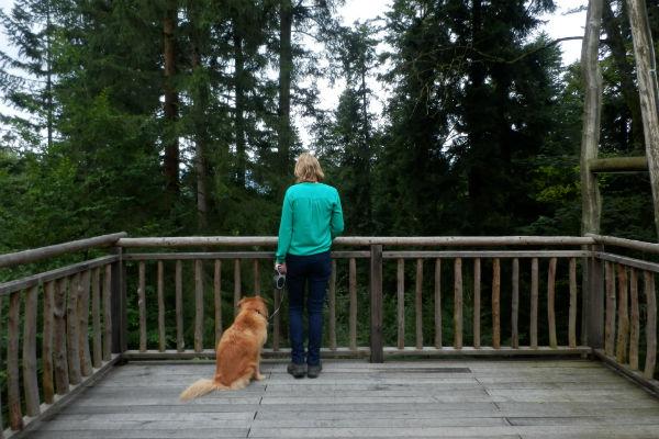 vakantie met hond terras