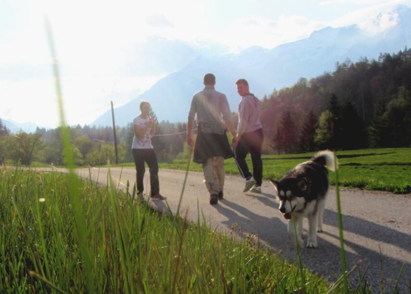 vakantie met hond Slovenie