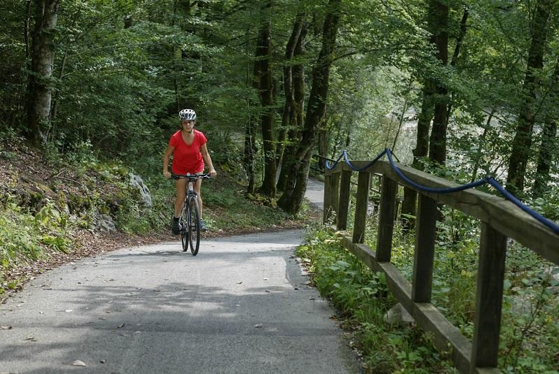 fietsen bohinj trekkinfiets