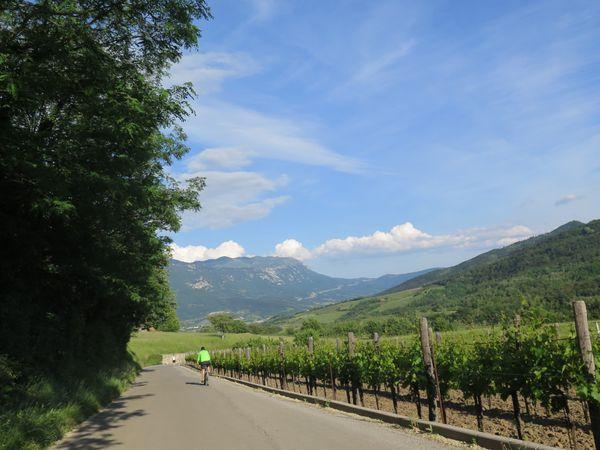 Vipava fietsvakantie Slovenie
