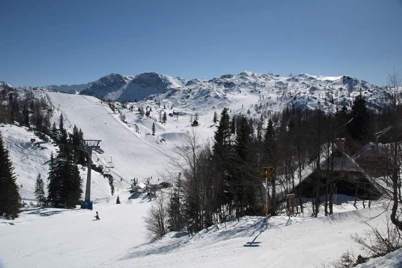 Vogel - ski slopes
