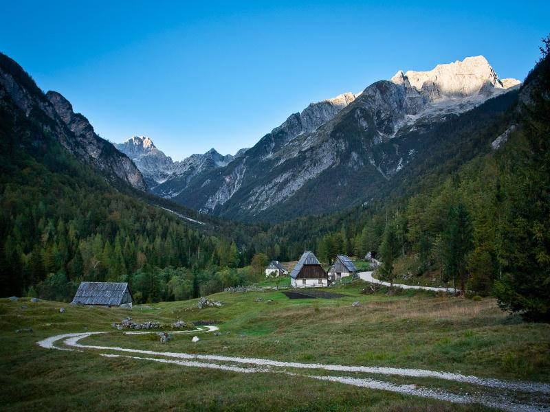 Alpenweide bij Trenta