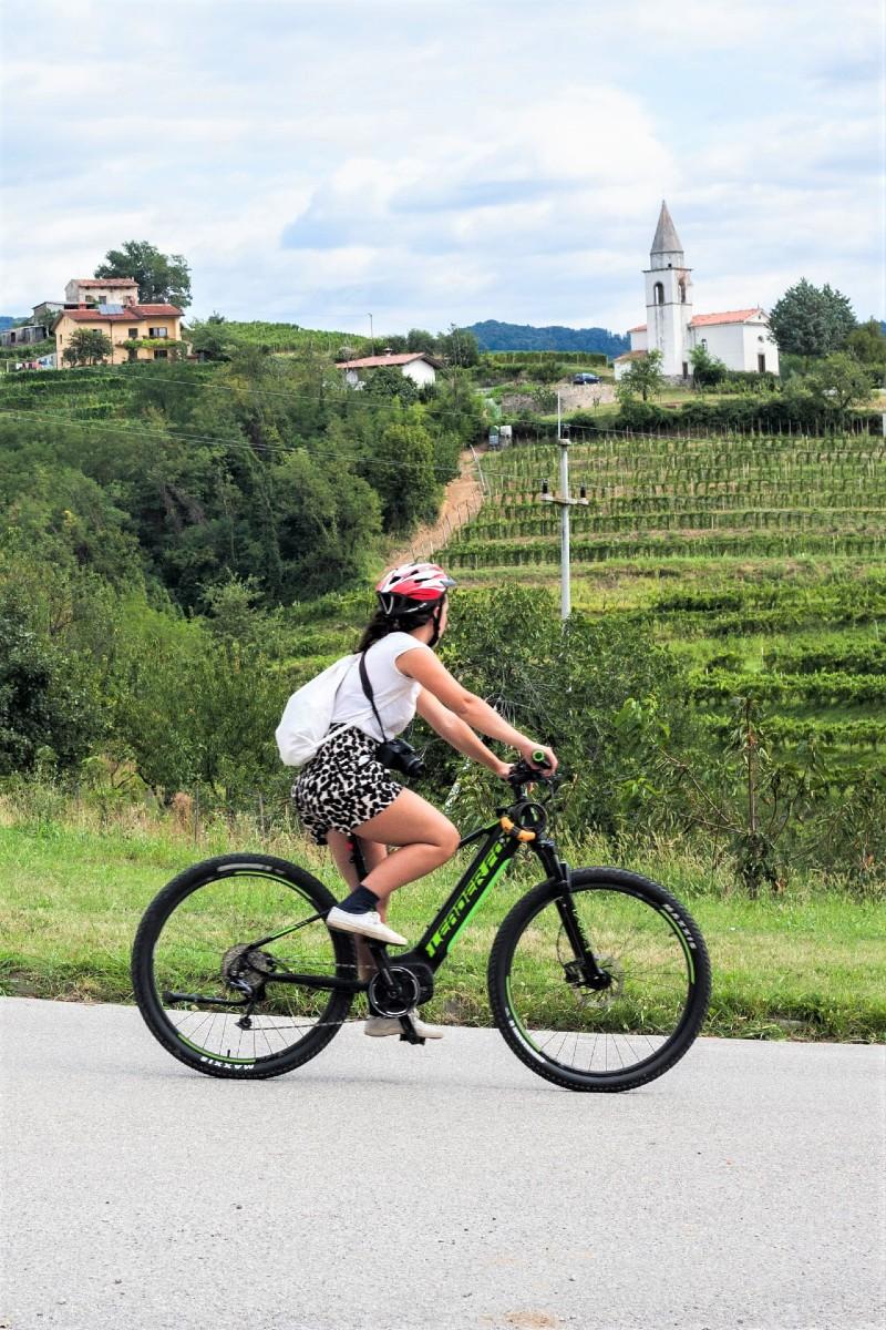 fietsvakantie met ebike Slovenie