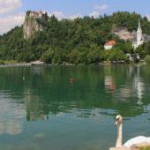 bled, annet de groot, ad, mijn slovenie