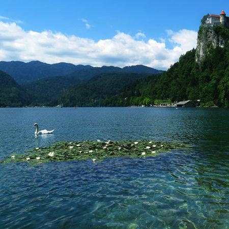 Top meren van Slovenie, Bled meer, Julische Alpen, bron Mijn Slovenie